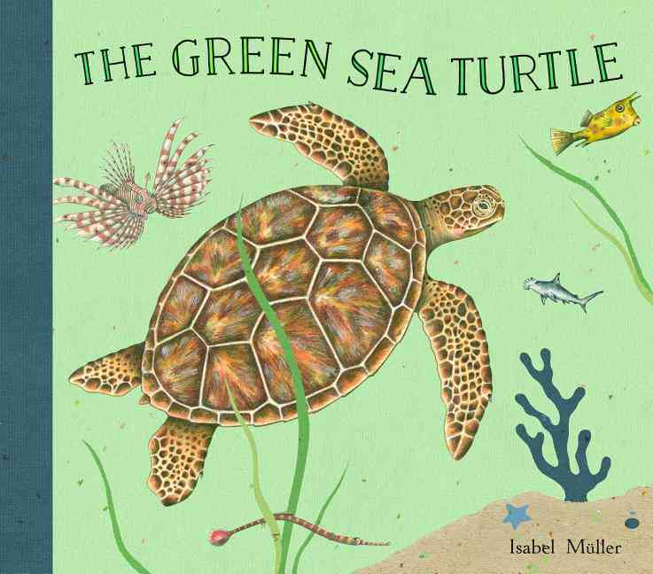 The Green Sea Turtle By Mnller, Isabel